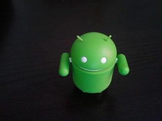 Prova di foto con Samsung Galaxy S