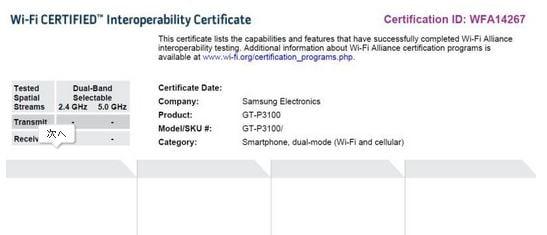 samsung-p3100-tablet