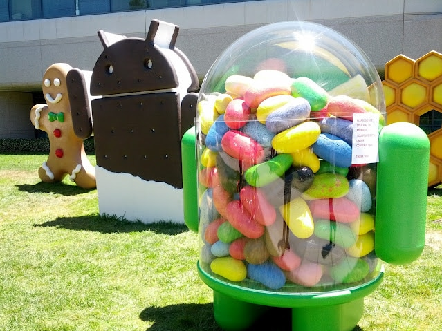 old jelly bean at googleplex