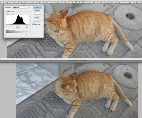 Analisi immagine Nikon