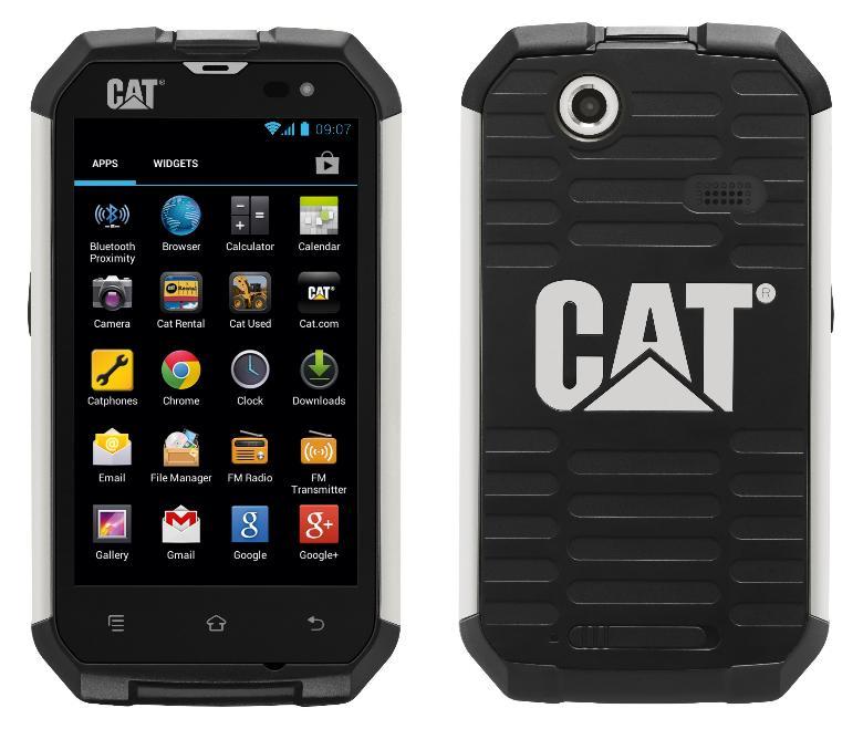 cat-b152[1]