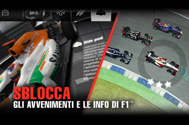 F1 Challenge Sample (4)