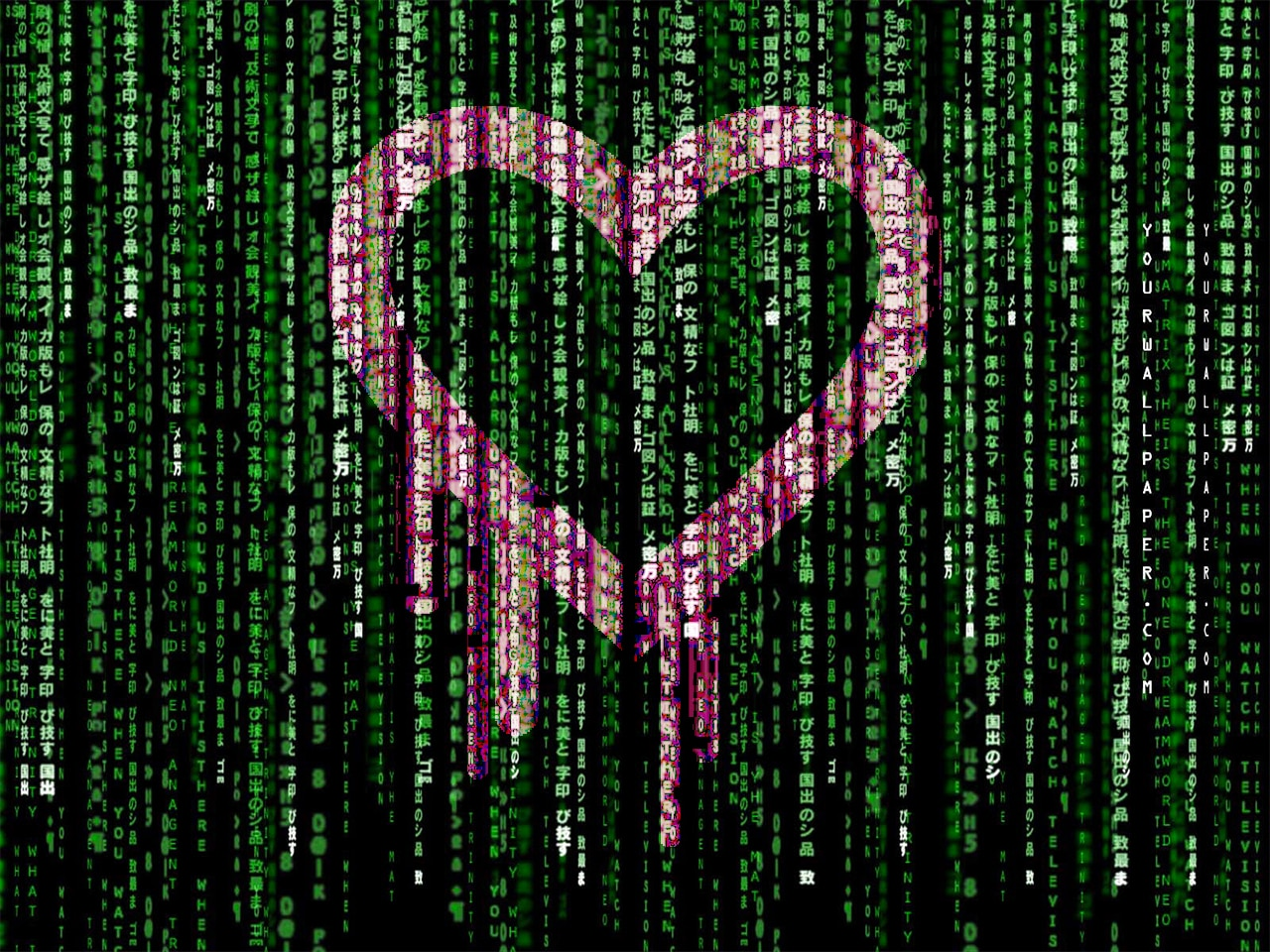 Heartbleed colpisce solo Android 4.1.1