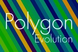 Polygon Evolution Mini