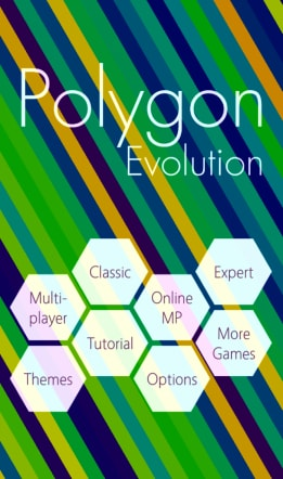 Polygon Evolution