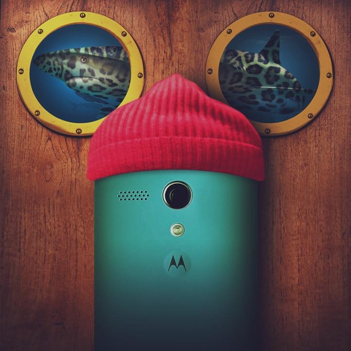 Motorola Final con squali