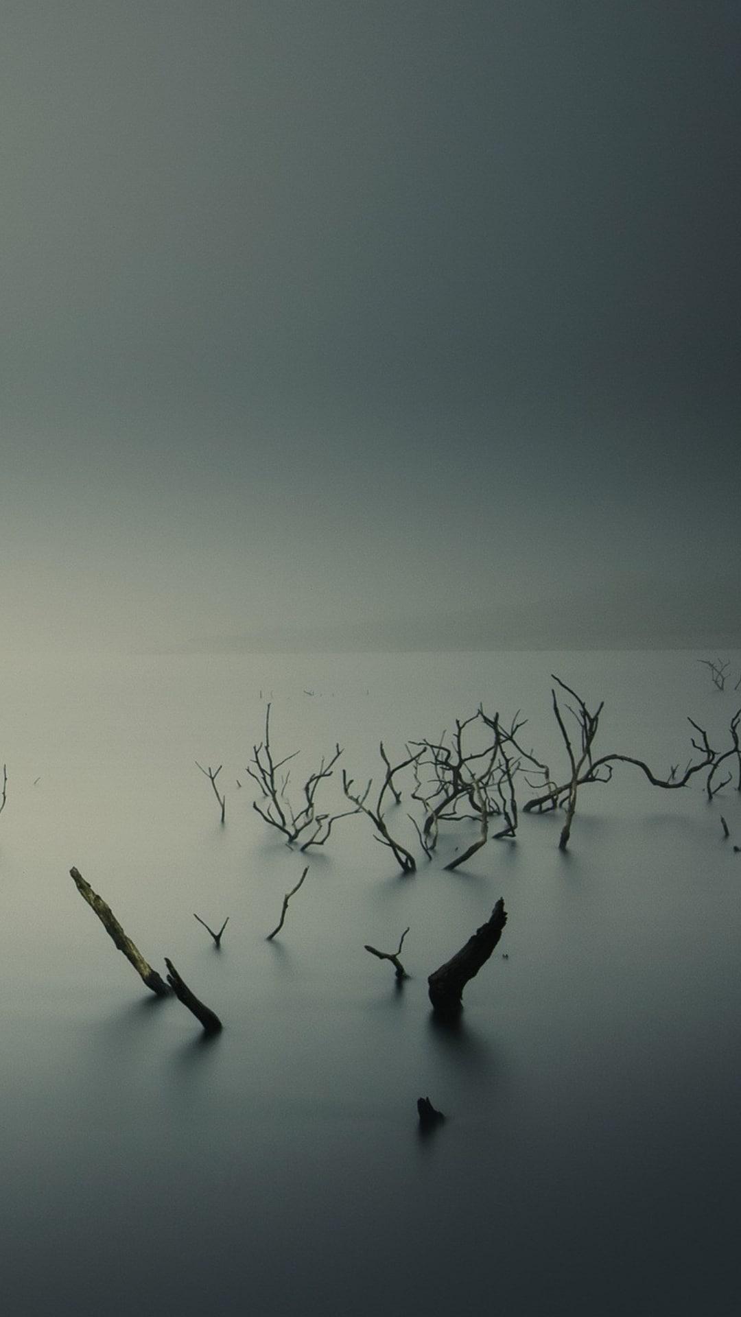 Awallpapers 9 bellissimi sfondi di paesaggi con la nebbia for Sfondi paesaggi bellissimi