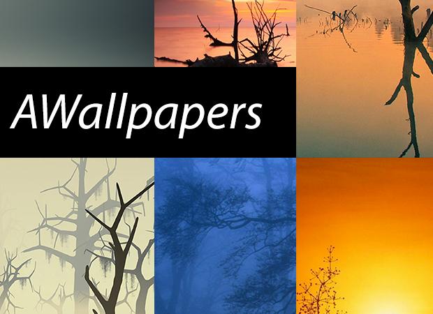 AWallpapers: 9 bellissimi sfondi di paesaggi con la nebbia