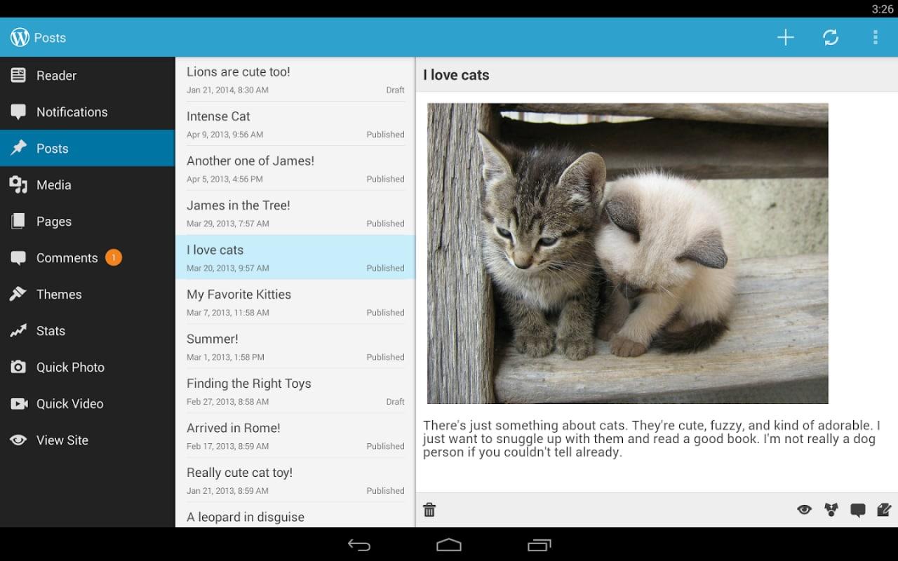 Wordpress gatti