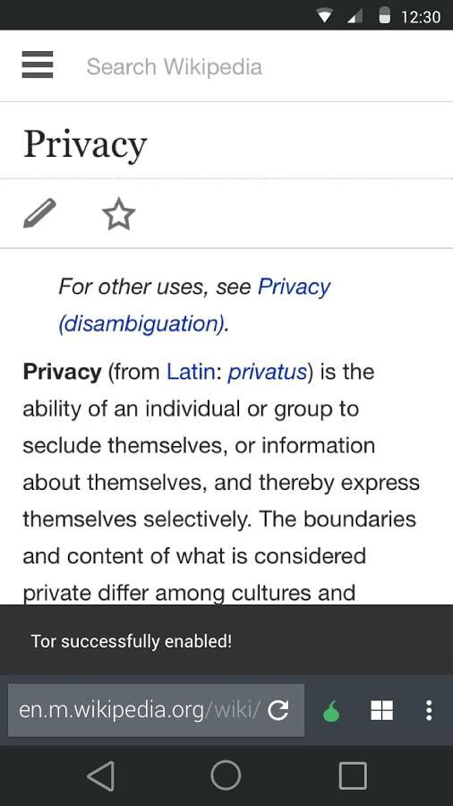 La Privacy Di Tor Browser Sui Nostri Dispositivi Grazie A
