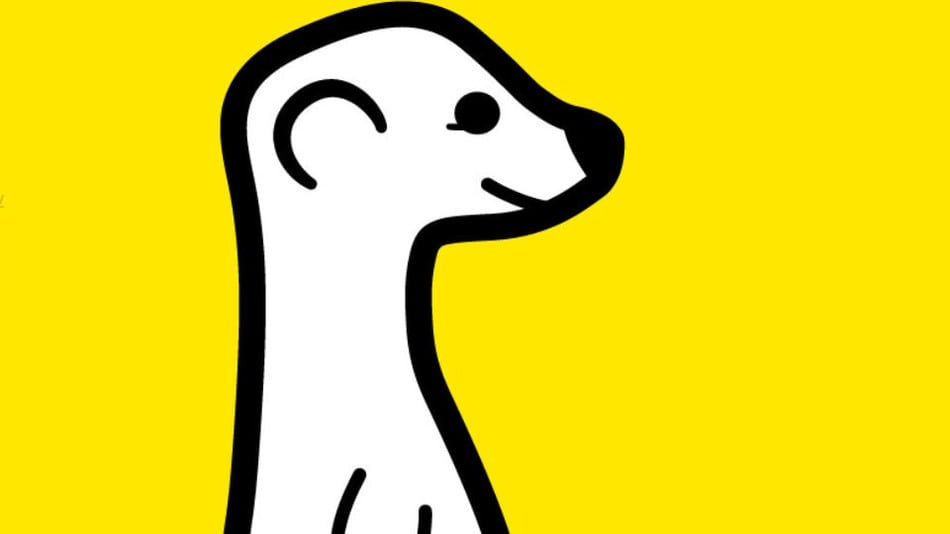 Meerkat arriva nel Play Store (ma non funziona)