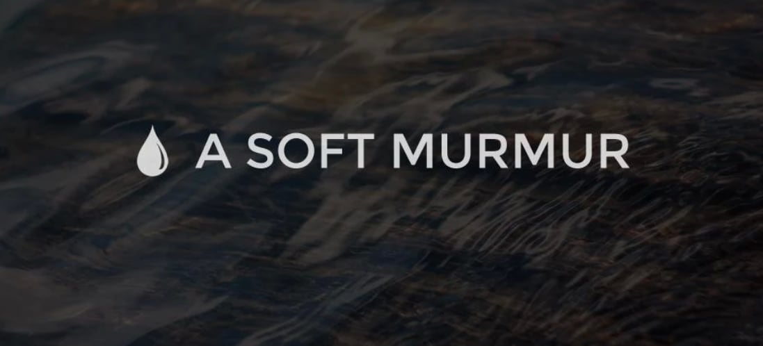 A Soft Murmur (head)