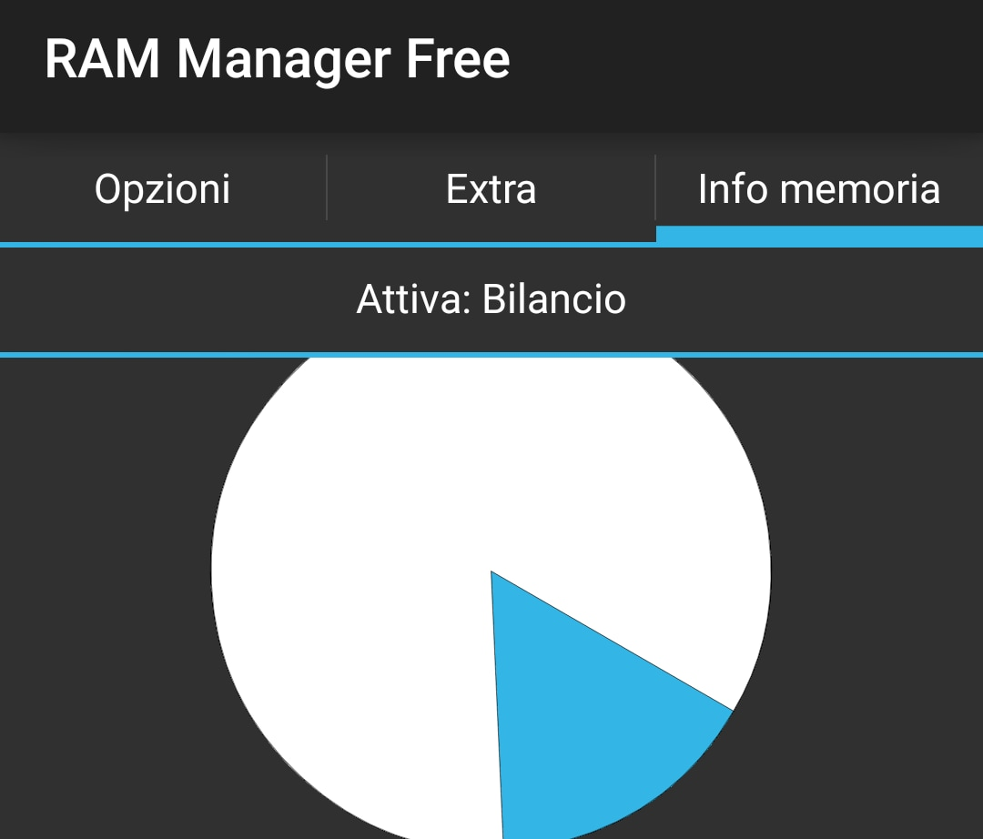 RAM Manager (head)