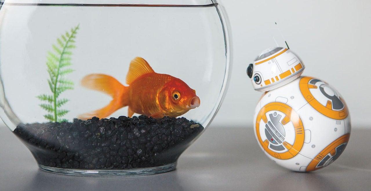 Sphero-BB-8-Foto-ufficiali-2