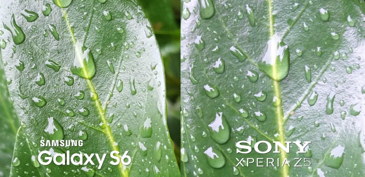 Galaxy S6 vs Xperia Z5: chi ha la fotocamera migliore? (video)