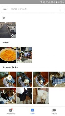 Google Foto barra ricerca1