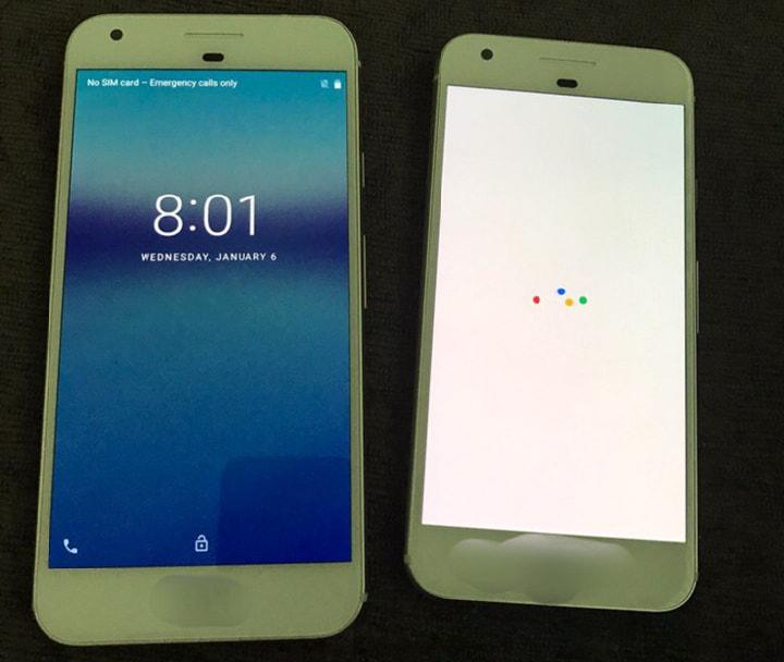 Ecco un paio di foto dei Google Pixel, e forse anche un paio scattate dai Google Pixel!