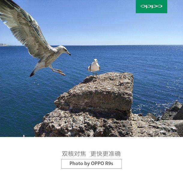 Alcuni dettagli e sample sulla fotocamera di OPPO R9s, una Sony IMX398 con f/1.7