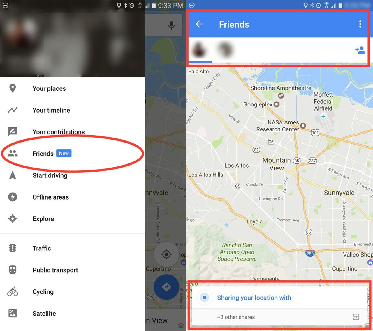google-maps-amici