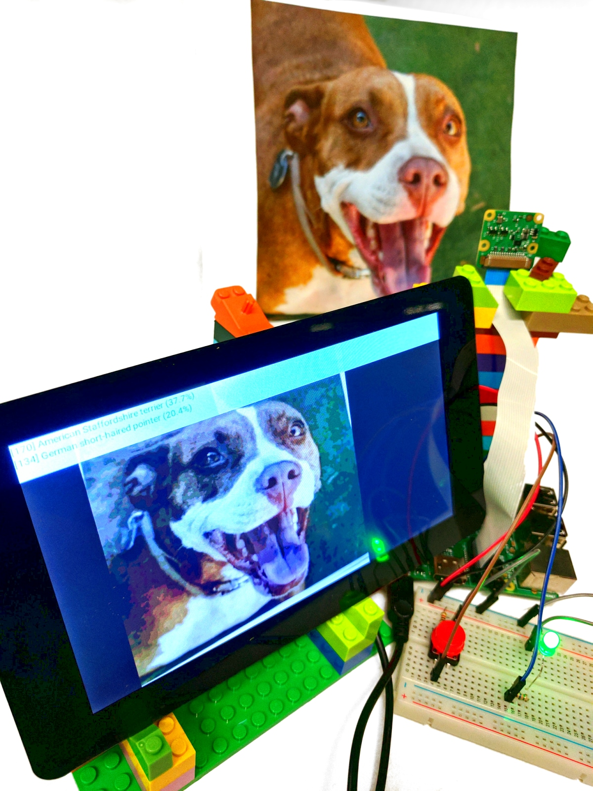 android-things-dog