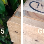confronto-fotografico-g5-g6