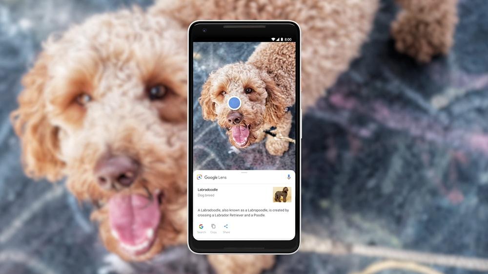 Google Lens ora è davvero per tutti: arriva il supporto anche su Google Go (foto)