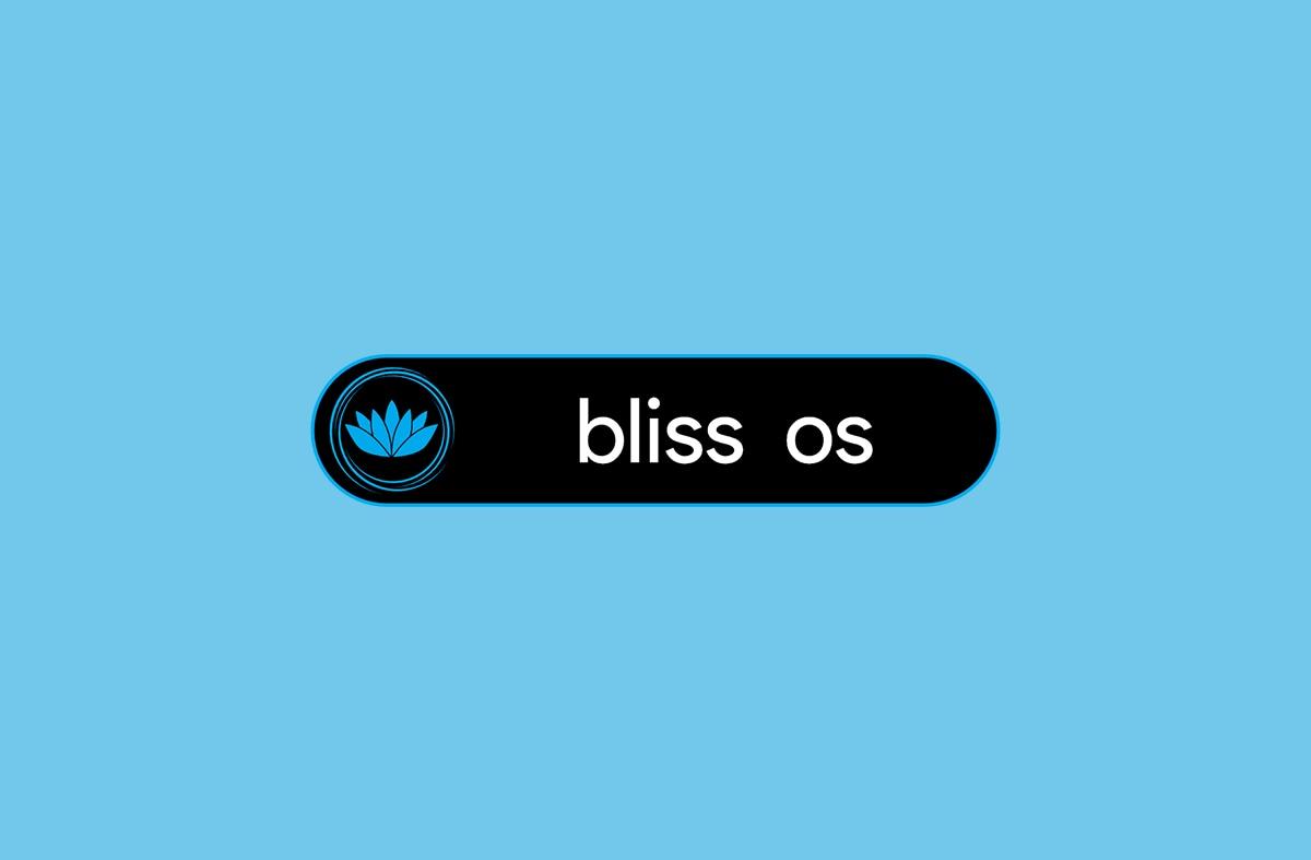 Bliss OS (Android su PC) supporta le API Vulkan (foto)