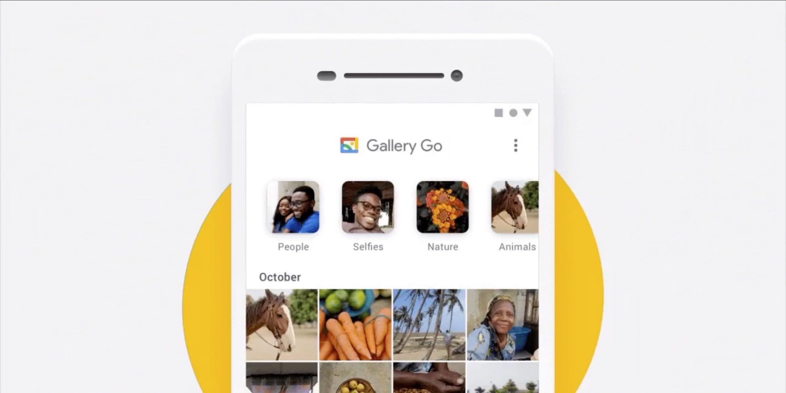 Continua l'ascesa di Google Gallery Go: voi l'avete installata?